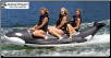 WHALE RIDE 3-Passenger Inline Recreational Banana Boat